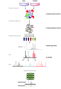 Fig. 1 Overview of bottom-up proteomics. Figure modified from http://pubs.rsc.org/en/content/articlehtml/2012/cs/c2cs15331a